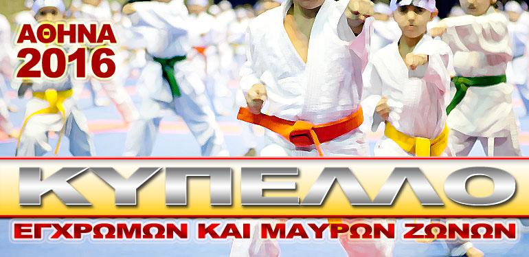 karate131116